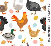 seamless pattern with chicken ...   Shutterstock .eps vector #1537224452
