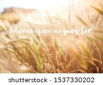inspirational quote  silence is ... | Shutterstock . vector #1537330202