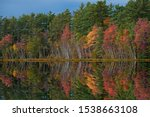 Autumn landscape of the shoreline of Big Twin Lake with mirrored reflections in calm water, Hiawatha National Forest, Michigan's Upper Peninsula, USA