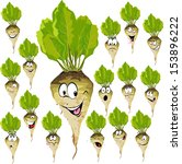 sugar beet cartoon with many... | Shutterstock .eps vector #153896222