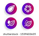 organic tested  pumpkin seed... | Shutterstock .eps vector #1539603635