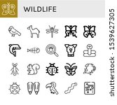 set of wildlife icons. such as... | Shutterstock .eps vector #1539627305