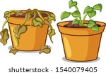 two potted plants on white... | Shutterstock .eps vector #1540079405