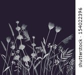 pencil drawing wild flowers... | Shutterstock . vector #154022396