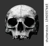 scary halloween skull head... | Shutterstock .eps vector #1540557665
