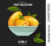 exotic fruit kumquat with green ... | Shutterstock .eps vector #1540579055
