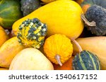 Gourd And Squash Background...
