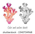 Coral Reef Set. Sketch Red...