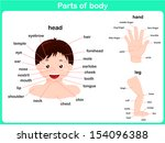 parts of body | Shutterstock .eps vector #154096388