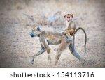 yellow baboon mother walking... | Shutterstock . vector #154113716