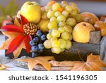 Autumn Frut And Vegetable In...
