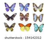butterfly on white | Shutterstock . vector #154142312