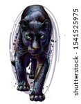 panther. artistic  sketchy ... | Shutterstock .eps vector #1541525975