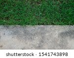 contrast of grass and cement...