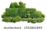 Cutout Green Hedge With Flower...