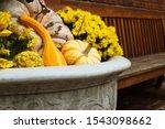 Autumn Gourds In Vintage...