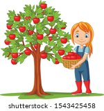 Girl Farmer Gathering Apples In ...