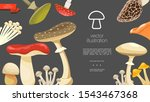flat forest mushrooms colorful... | Shutterstock .eps vector #1543467368