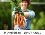 Close Up Portrait Gardener With ...