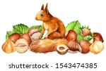 Set Of Nuts And Squirrel On A...