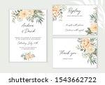 wedding cards design. creamy...   Shutterstock .eps vector #1543662722