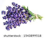 Bunch Of Lavandula Or Lavender...
