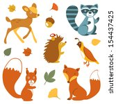cute woodland animals collection | Shutterstock .eps vector #154437425