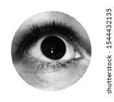 close up human eye. vector... | Shutterstock .eps vector #1544432135
