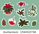 christmas decoration plants... | Shutterstock .eps vector #1544522738