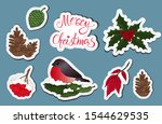 christmas decoration plans and... | Shutterstock .eps vector #1544629535