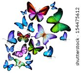 Stock photo many different butterflies flying isolated on white background 154475612
