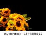 Photos Of Sunflowers...
