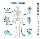 types of joints vector... | Shutterstock .eps vector #1544984528