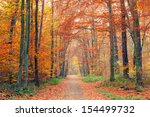 alley in the colorful autumn...   Shutterstock . vector #154499732