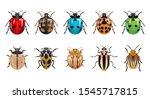 A Set Of Ladybugs With...