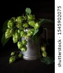 Green Common Hop Plant In An...