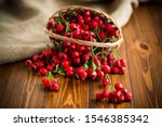 Ripe Red Dogrose In A Basket O...