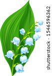 Lily Of The Valley Flower With...