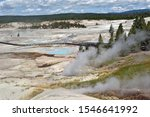 Colloidal Pool and other Geysers under blue sky in the Porcelain Basin of Norris Geyser Basin area in Yellowstone National Park in Wyoming, United States of America