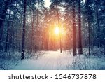 Landscape With Winter Forest...
