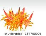 Orange Tropical Flowers...