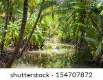 coconut plantation. | Shutterstock . vector #154707872