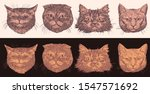 Portraits Of Cats. Design Set....