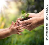hands of a child taking a plant ... | Shutterstock . vector #154758272