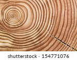 Wood Section.