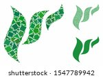 flora abstraction mosaic of... | Shutterstock .eps vector #1547789942