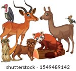 isolated picture of many... | Shutterstock .eps vector #1549489142