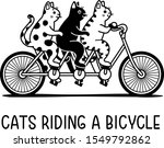 Three Cats Riding A Bicycle ...