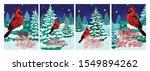 Cardinal Bird In Winter Forest...