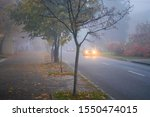 Misty weather descended on the...